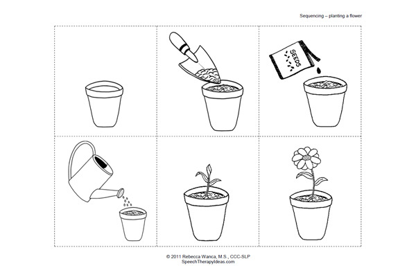 Plant Sequencing Worksheet For Kindergarten - life cycle worksheets ...
