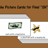"""Mustache Picture Cards for Final """"SH"""" Sound"""