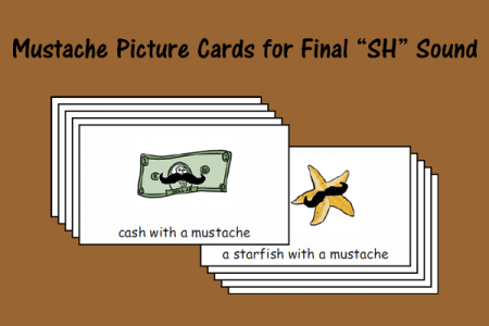 "Mustache Picture Cards for Final ""SH"" Sound"