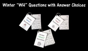 """Winter """"WH"""" Questions with Answer Choices"""