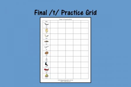 Final /t/ Practice Grid