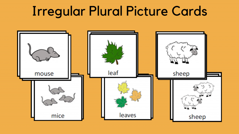 Irregular Plural Picture Cards