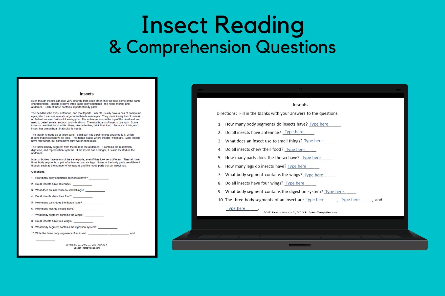 Insect Reading Sample And Comprehension Questions