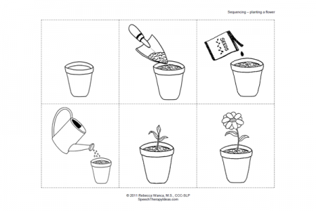 Planting A Flower Sequence