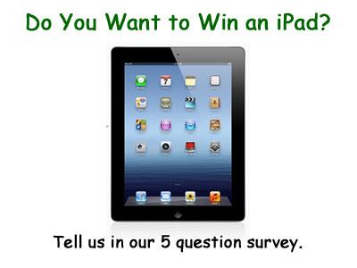 iPad Survey