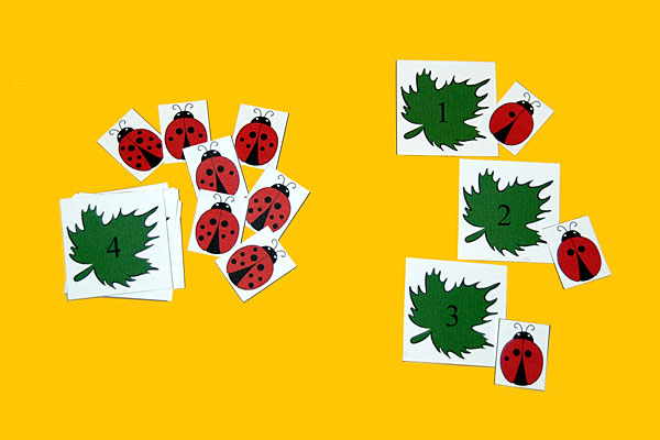 Ladybug Cards For Number Matching & Sequencing
