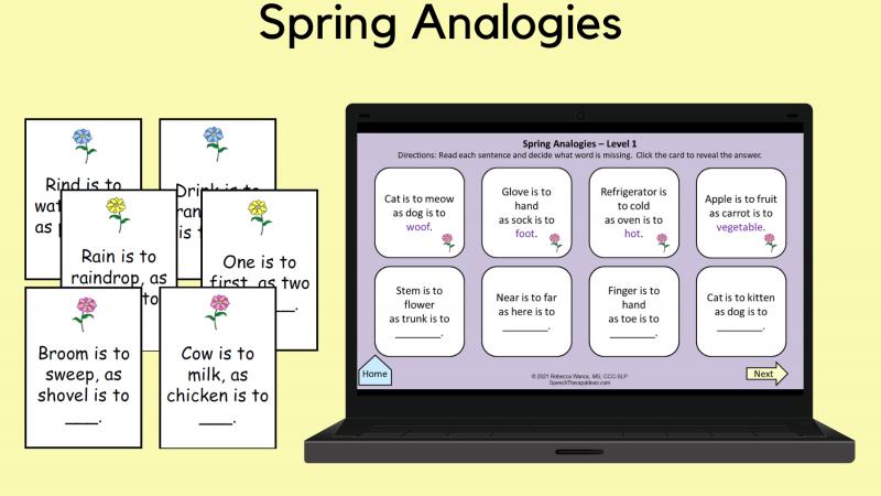 Spring Analogies