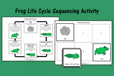 Frog Life Cycle Sequencing Activity