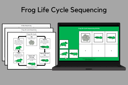 Frog Life Cycle Sequencing