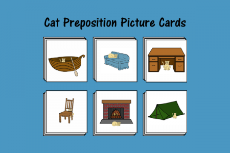 Cat Preposition Picture Cards