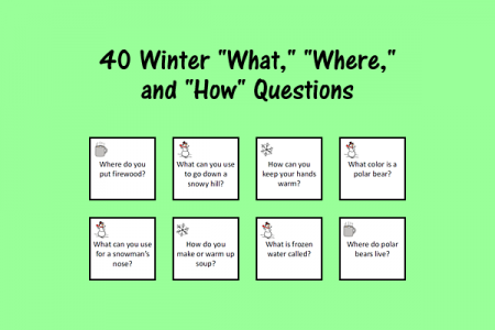 "40 Winter ""What,"" ""Where,"" and ""How"" Questions"