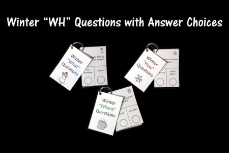 winter wh questions with answer choices speech therapy ideas