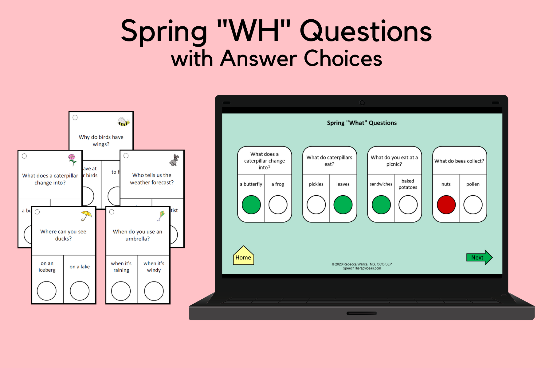 """Spring """"WH"""" Questions With Answer Choices"""