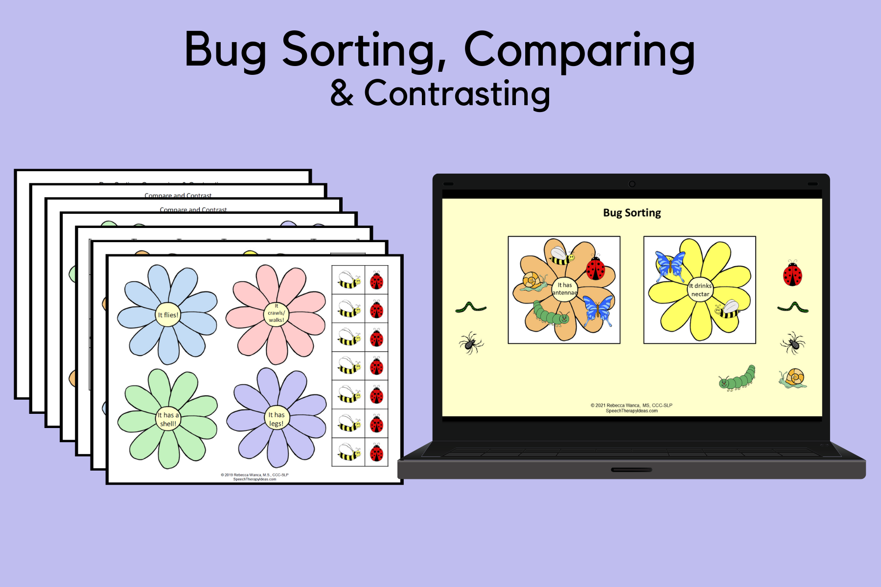 Bug Sorting, Comparing & Contrasting