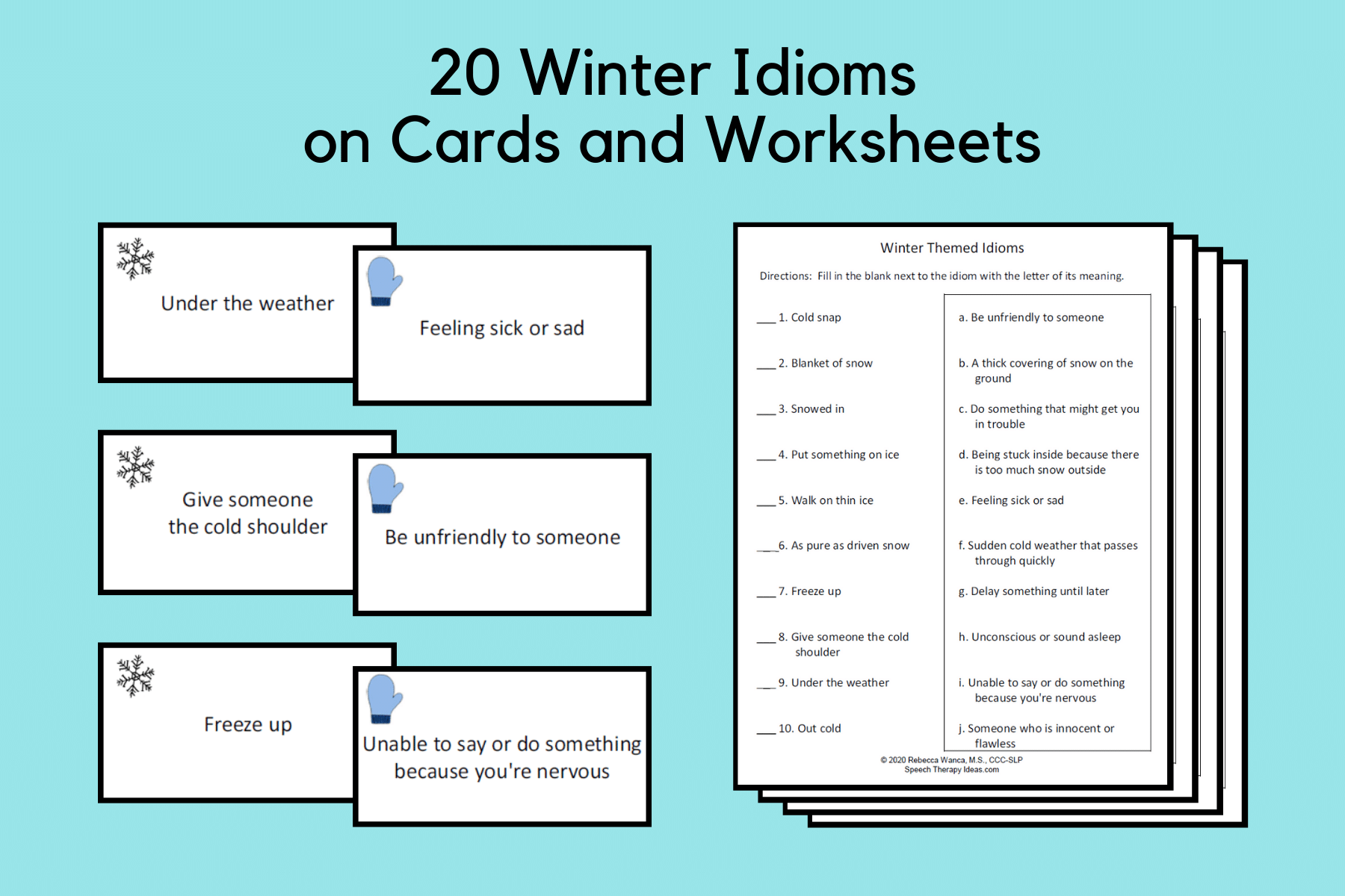 Winter Theme Idiom Cards and Worksheets