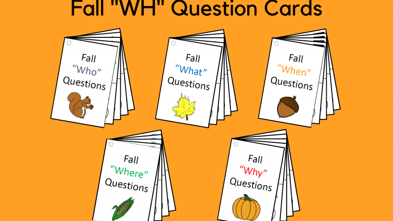 Fall WH Questions