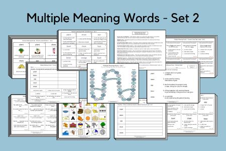 Multiple Meaning Words Set 2