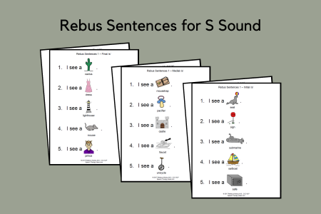 Rebus Sentences for S Sound