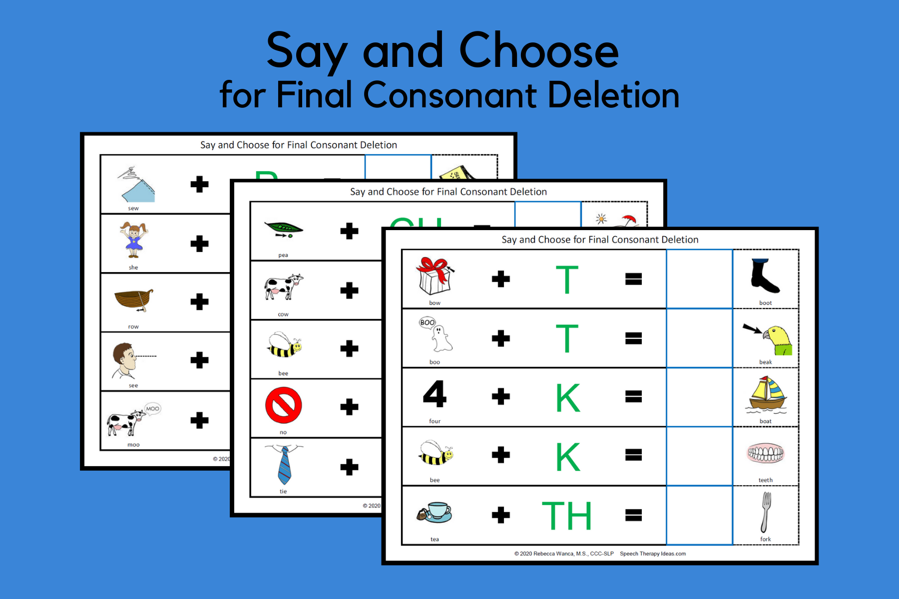 Say And Choose For Final Consonant Deletion