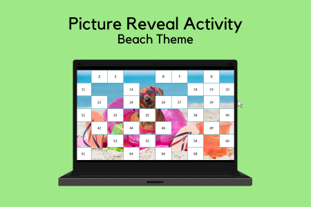 Beach Picture Reveal