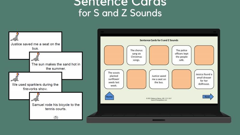 Sentence Cards For S And Z Sounds